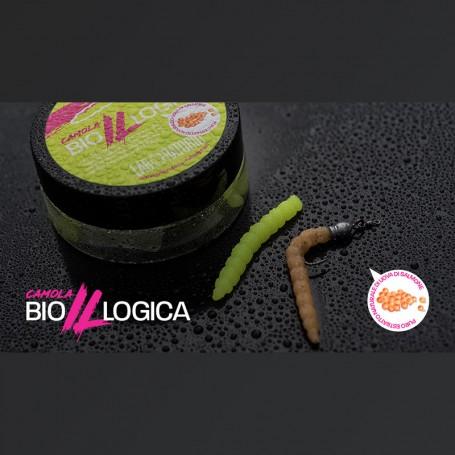 GAME LABORATORIO CAMOLA BIOILLOGICA