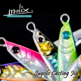 Molix Jugulo Casting Jig - Hard Bait Spinning